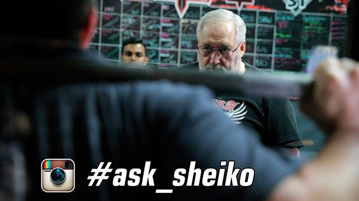#ask_sheiko on instagram